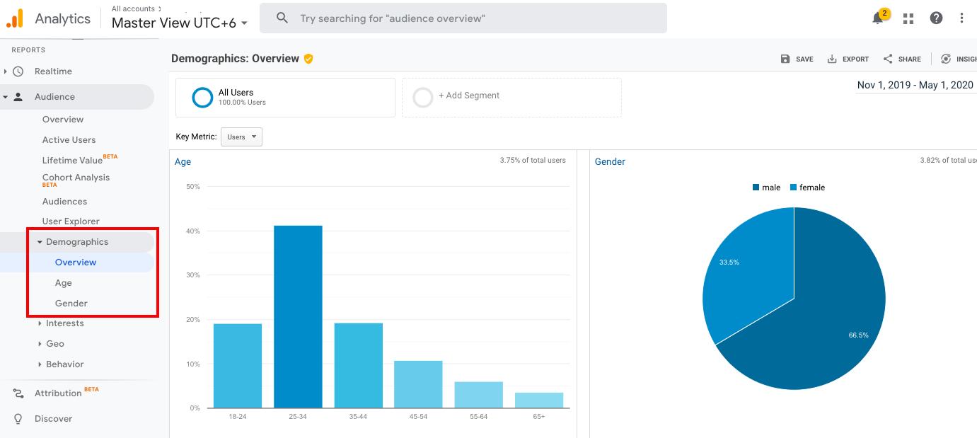 Google Analytics target audience