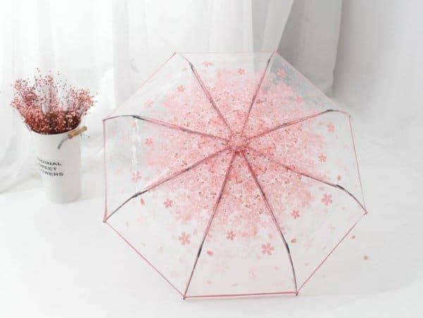 transparent-umbrella.jpg