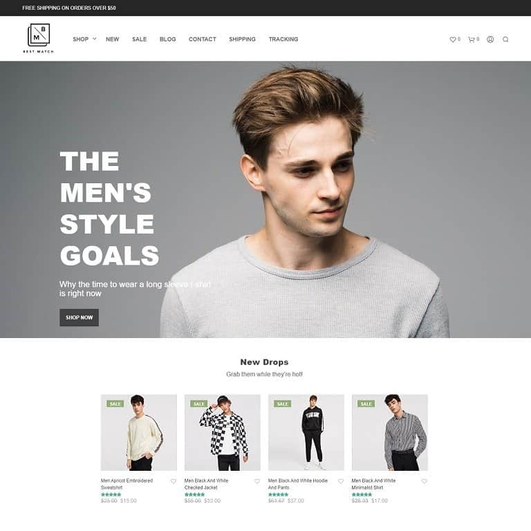 Dropshipping Themes For AliDropship-Based Stores