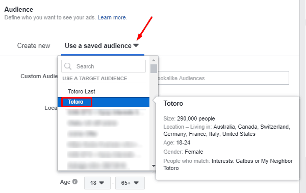Use a saved audience