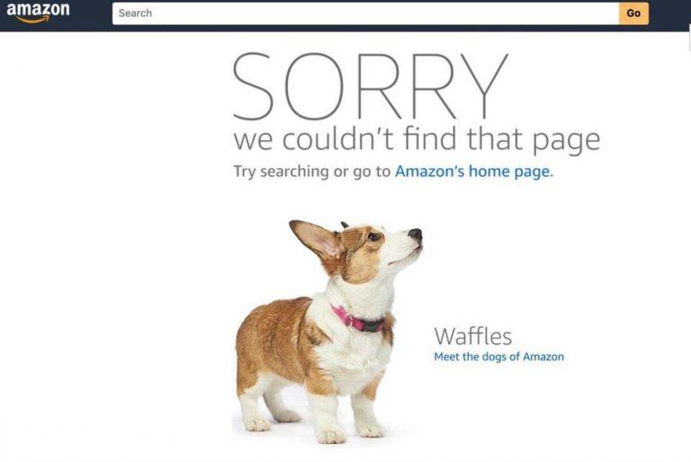 404 page design Amazon