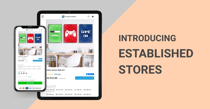 Introducing Established Businesses For Sale: Make Your Ecommerce Investment Today!