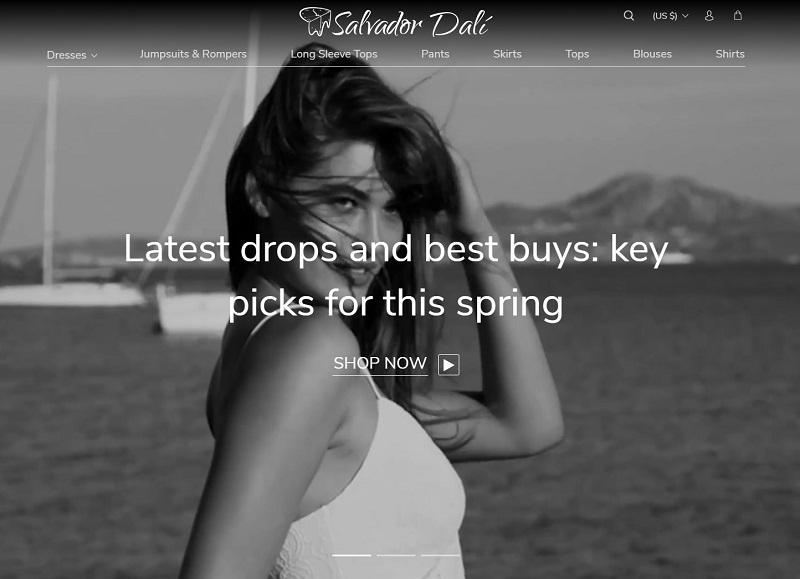 a picture showing the homepage of one of AliDropship themes