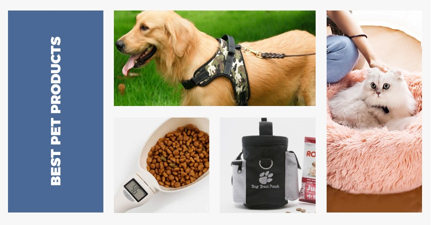 35 best pet products from AliExpress for dropshipping stores