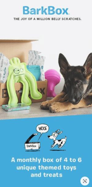 BarkBox-ad-example.png