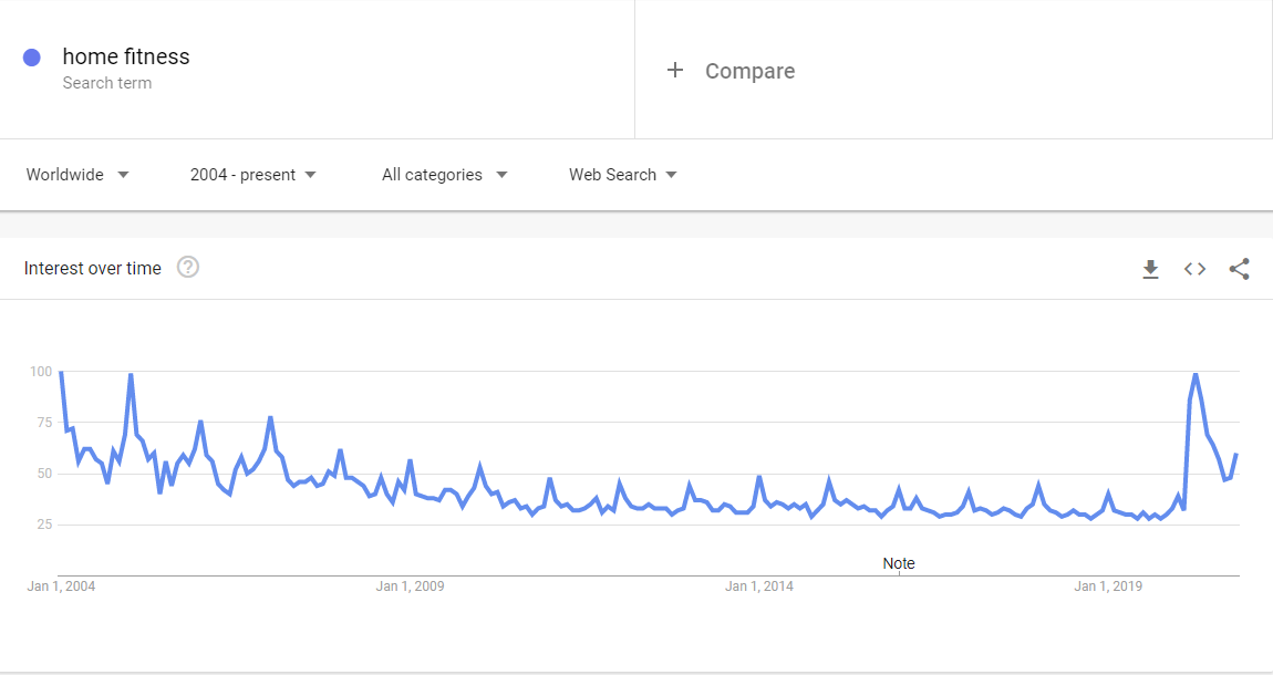 Niche Products To Sell In Your Dropshipping Store In 2021: fitness google trends