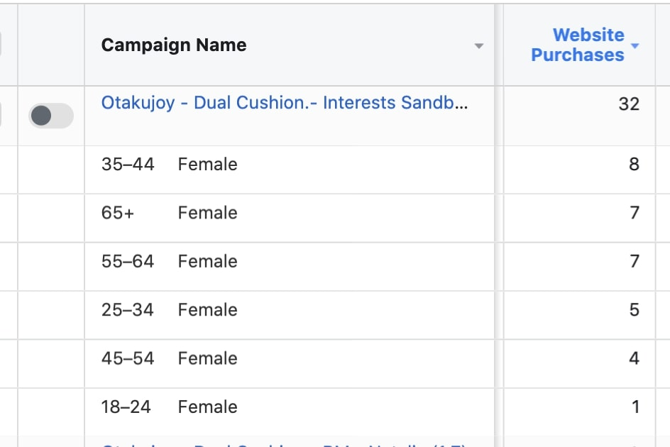 Target audience demographics analysis