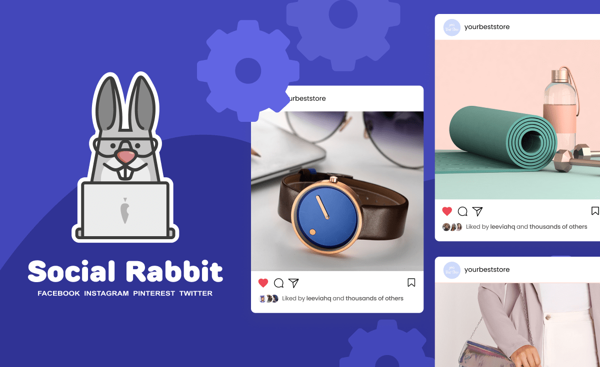 How To Schedule Instagram Posts: Social Rabbit Plugin