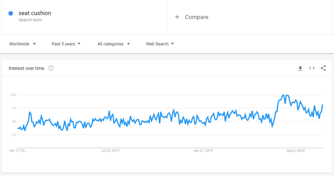 According to Google Trends, seat cushions are quite popular