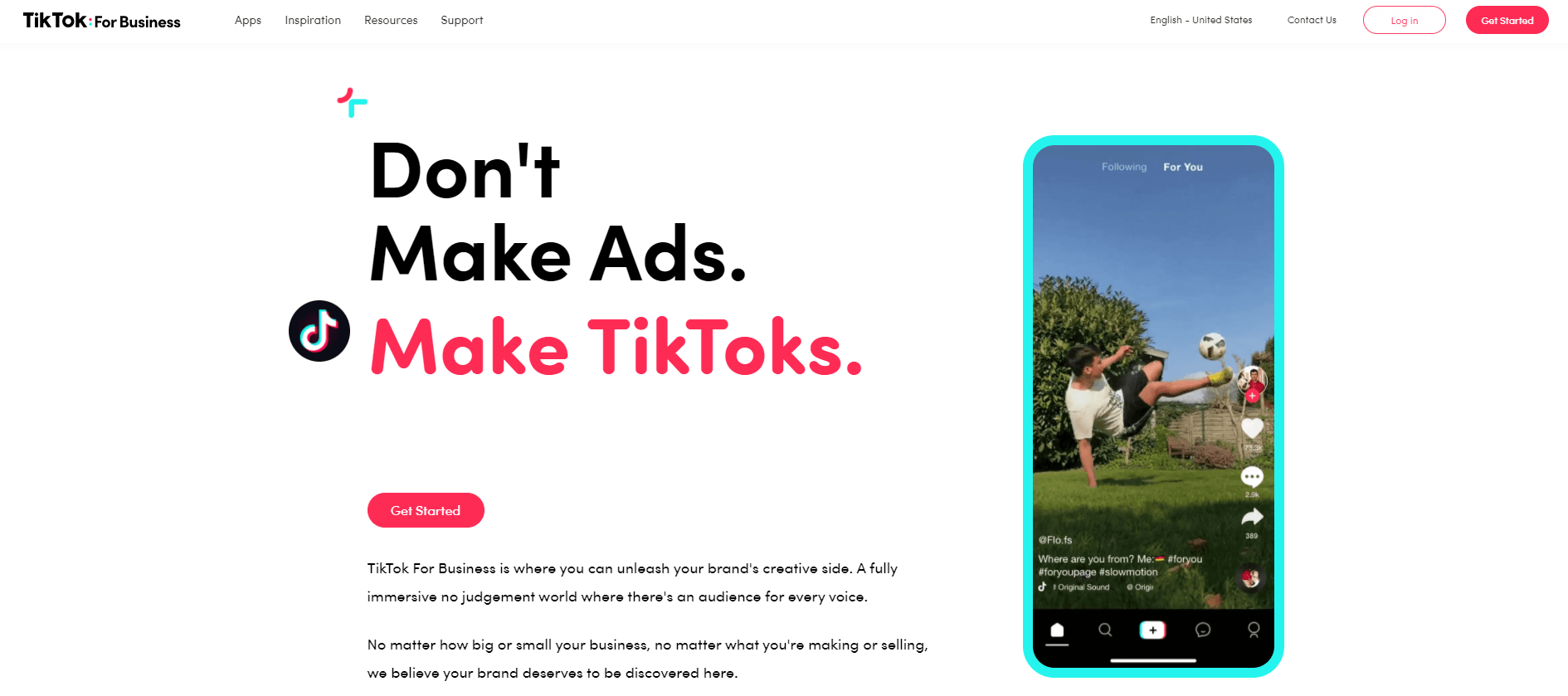 TikTok main message