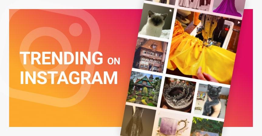 7 steps to getting trending on Instagram
