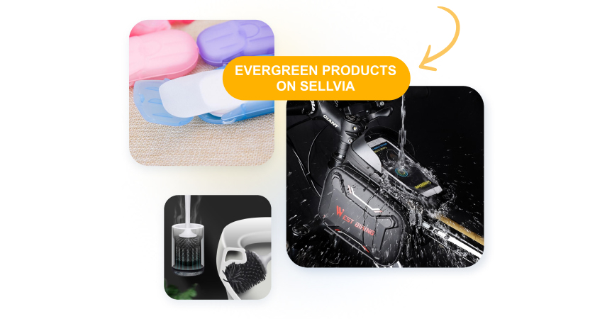 Examples of evergreen dropshipping products that never lose popularity