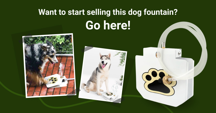 Go here to start selling the outdoor dog fountain, one of the best dropshipping products to start offering this week