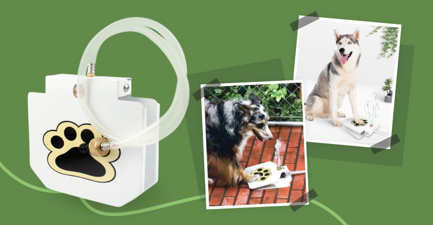 Automatic outdoor dog fountain, one of the best dropshipping products to start selling this week